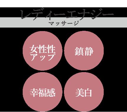 PALMS(パルマス)LADYENAGY〜レディーエナ〜マッサージバーム